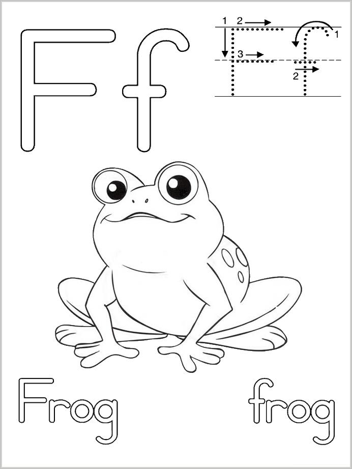 Раскраска лягушка - это каталог рисунков на которых напечатаны прекрасные картинки, раскрашивая которые